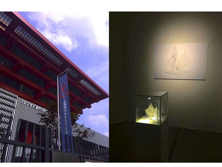 20150808 上海国际科学与艺术展